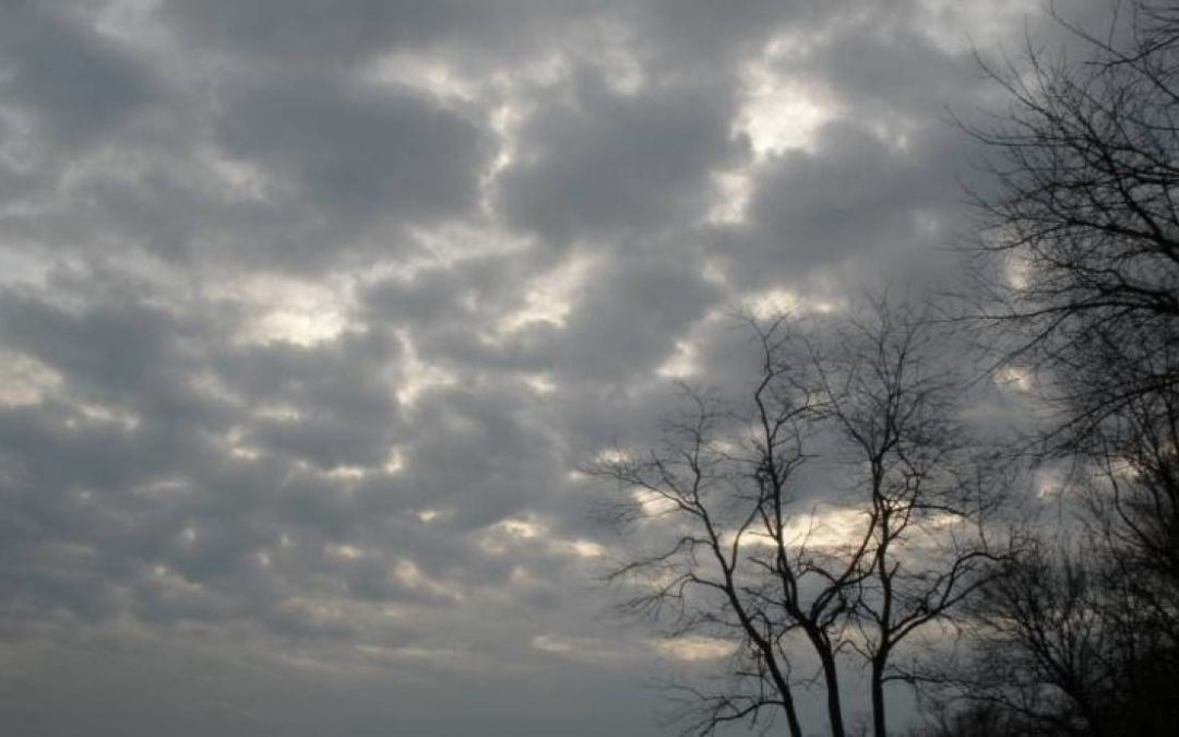 الطقس غائم مع ظهور طبقات من الغبار تشتد تدريجيا خلال النهار