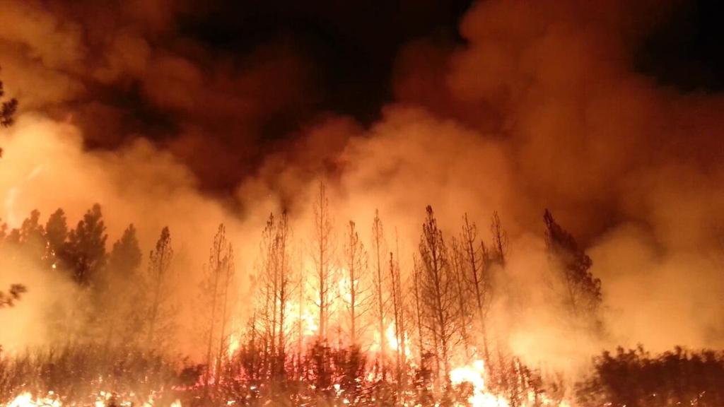 """امتداد الحرائق في منطقة """"إيركوتسك"""" الروسية على مساحة تزيد على 25 ألف هكتار"""