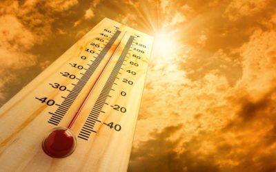 الطقس غدا الجمعة قليل الغيوم والحرارة تتعدى معدلاتها الموسمية