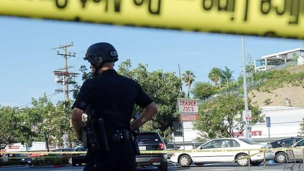 مقتل 7 أشخاص بحادث سير في الولايات المتحدة