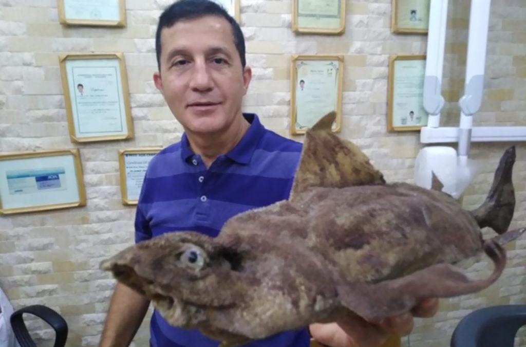 سمكة القرش المثلث في بحر صور غريبة على شواطىء المتوسط وستضاف الى المجموعة المحنطة في متحف جعيتا