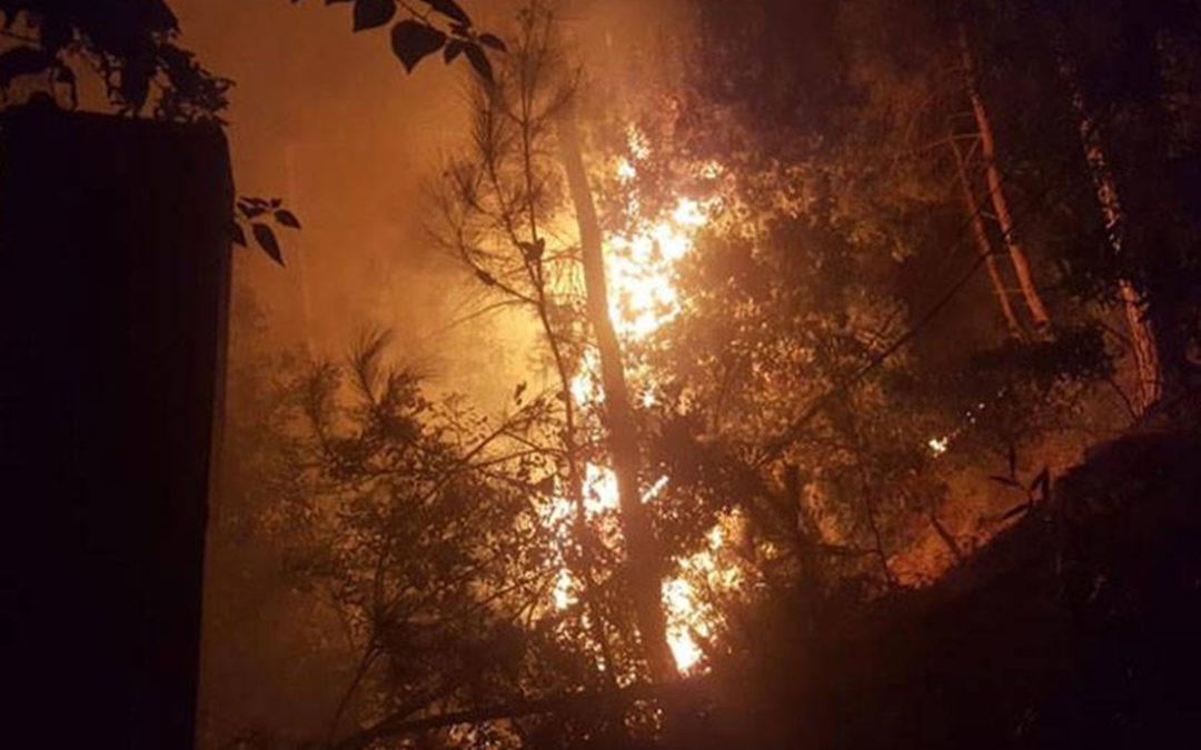 """""""حريق ضخم"""" في المشرف… ووزيرة الداخلية توجهت الى المنطقة لمتابعة عملية اخماده"""