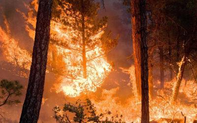 إجلاء مئات السكان بسبب حريق كبير في إيطاليا