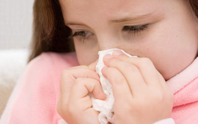 الإنفلونزا القاتلة تعود