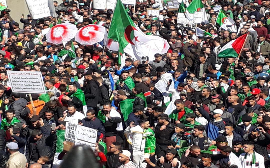 الجزائريون إلى الشارع مجددا للجمعة السابعة على التوالي