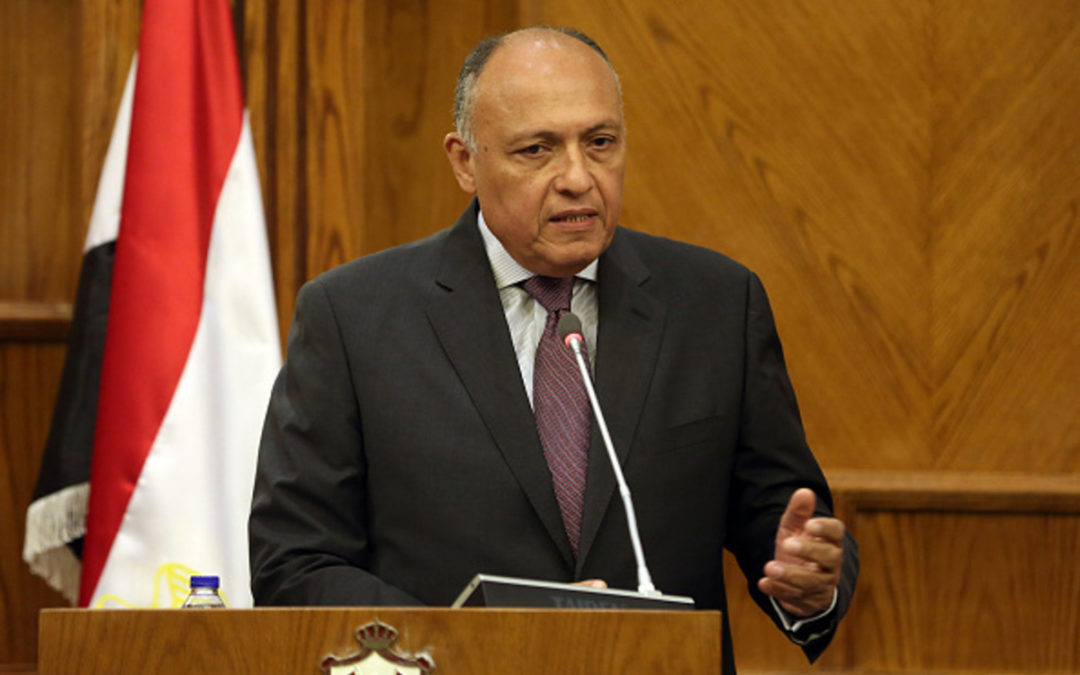 مصر: إرسال قوات تركية إلى ليبيا يؤثر سلبا على مؤتمر برلين