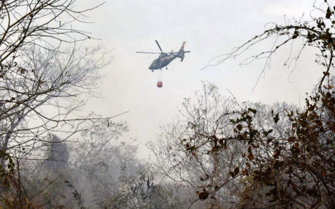 طائرات حربية تسقط مياها على الأمازون مع بدء الجيش البرازيلي مكافحة حرائق الغابات