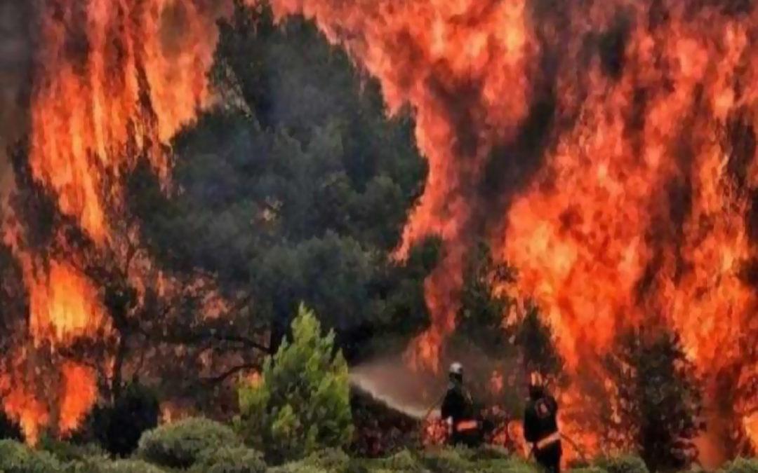 إجلاء 5 آلاف شخص من جزيرة كناريا الكبرى الإسبانية بسبب حريق