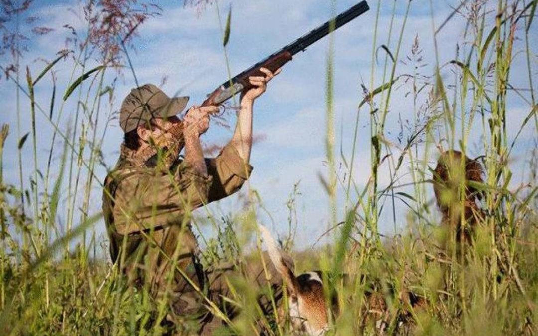 وزارة البيئة تذكّر بفتح موسم الصيد من 1 ايلول لغاية 15 شباط