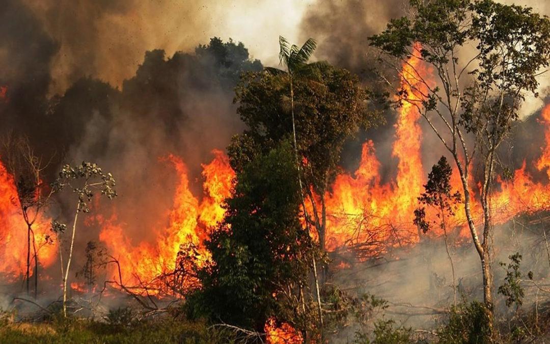 حرائق في مختلف المناطق اللبنانية
