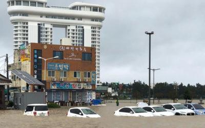 مقتل 6 في إعصار اجتاح أجزاء من كوريا الجنوبية