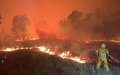حرائق الغابات تستعر في خمس مدن وبلدات بولاية أوريغون الأمريكية