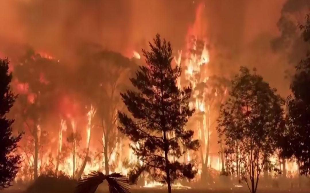 حرائق الغابات في أوستراليا تأججت وسط موجة حر تنذر بتفاقم الأزمة