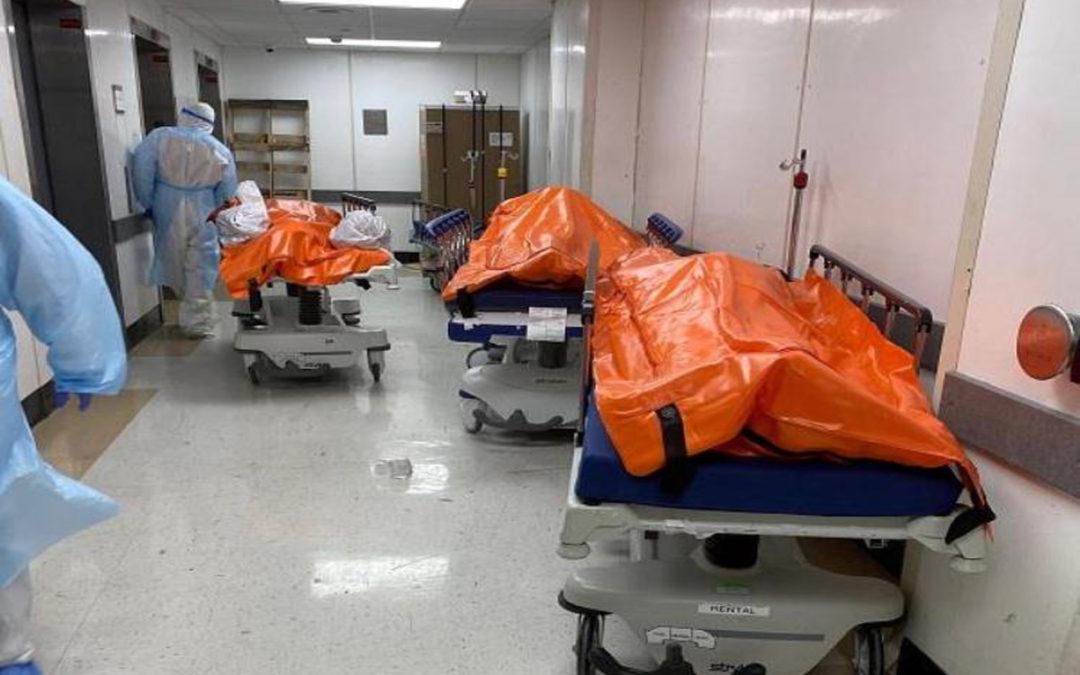 عدد الوفيات اليومية بكورونا في الولايات المتحدة ينخفض 759