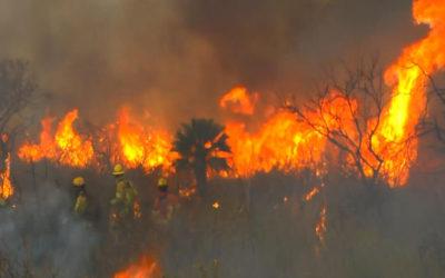 سبعة مصابين و15 مفقودا جراء حرائق غابات في الأرجنتين