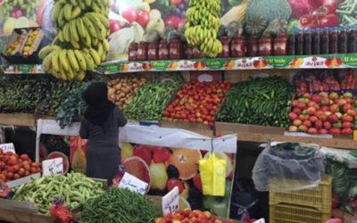 اتحاد نقابات المزارعين: لفتح أسواق جديدة مع الدول الشقيقة